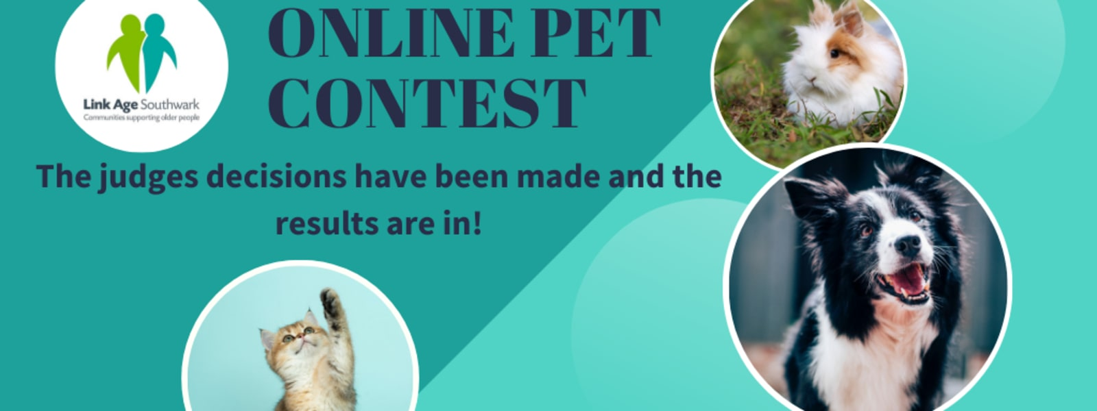 Online Pet Contest Results